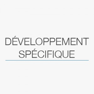 image-a-la-une-developpement_specifique-solutys-group